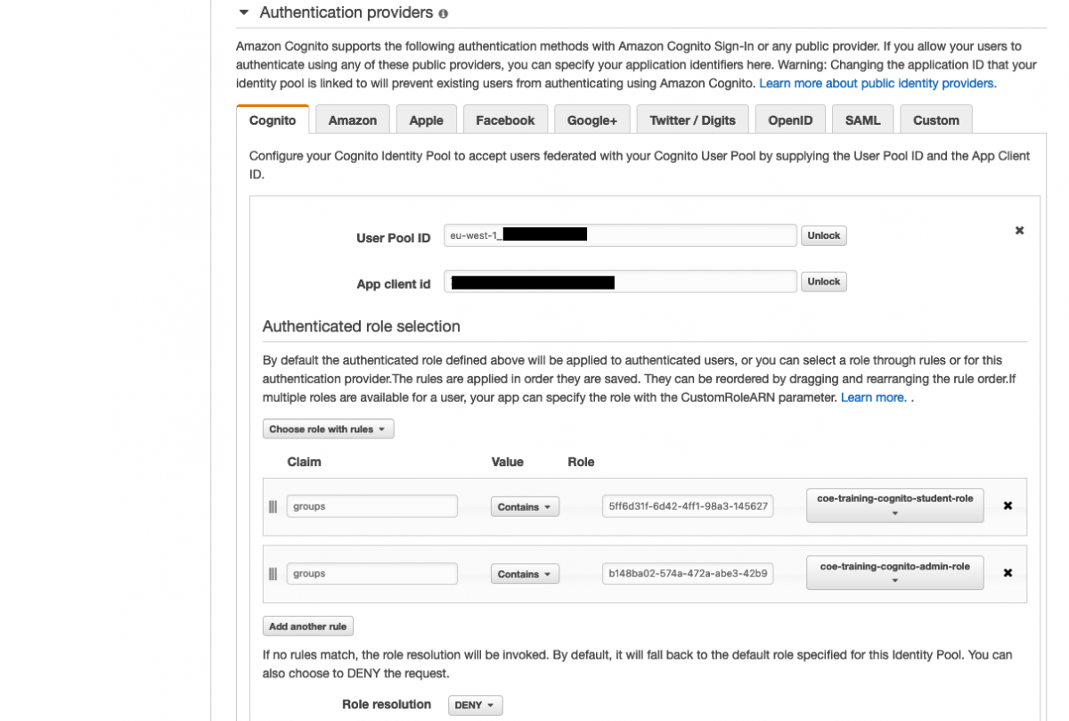 Graphical user interface, text, application, AWS, Cognito