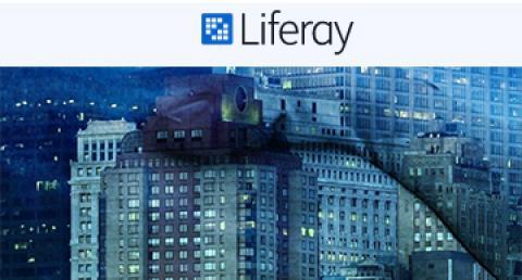 everis, Partner Platinum de Liferay