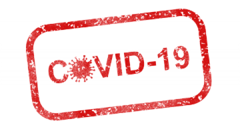 Protocols against COVID-19: everis releases an advisory service to obtain...