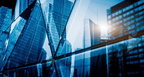 Pesquisa da everis aponta as ações prioritárias para a transformação digital...